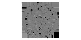 logo-uniceland